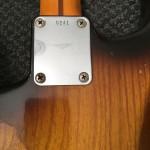 Strat rear neckplate